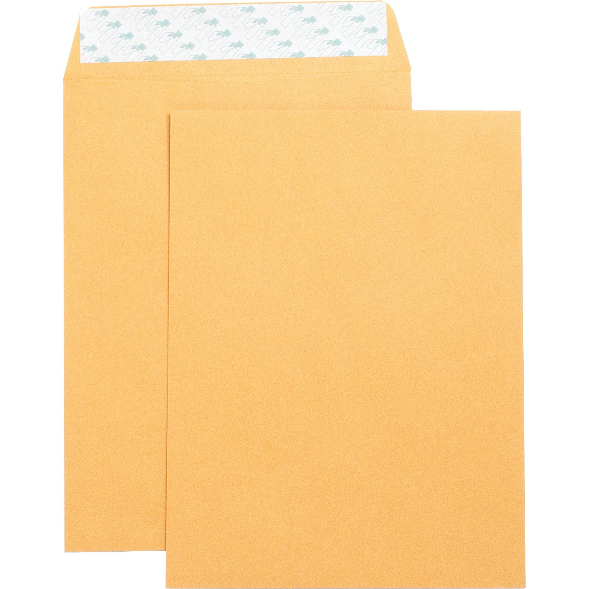 "Business Source Self Adhesive Kraft 9"" x 12"" Catalog Envelopes -250/Box"